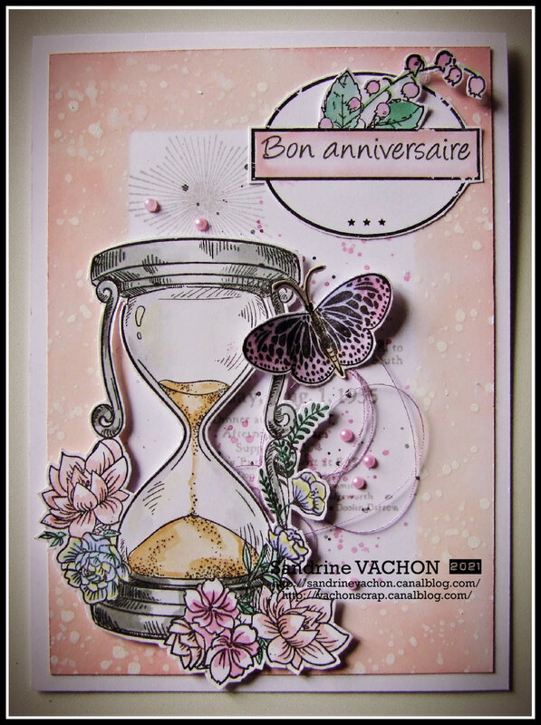 Sandrine VACHON 378 PCC (1)