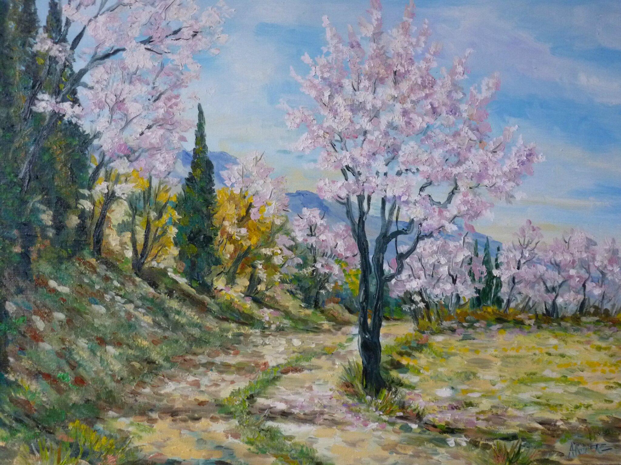 Chemin et amandiers fleuris / Vendu