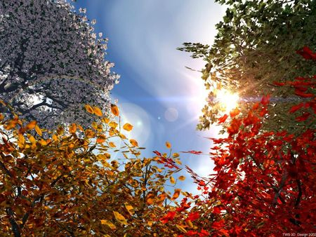 automne-3d-wallpaper