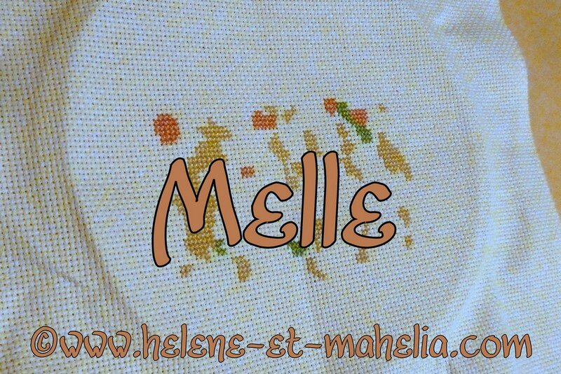 melle_saldec13_2