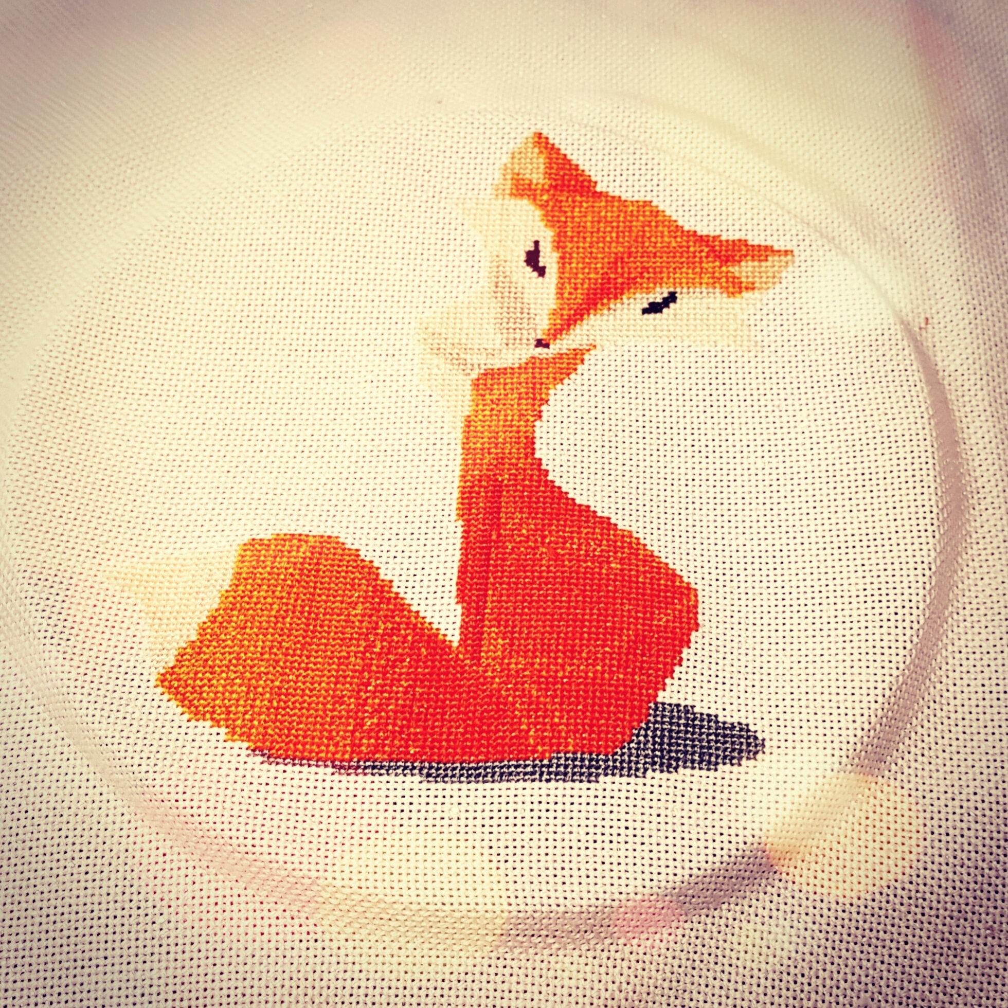 Mon joli renard <3