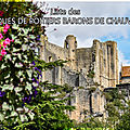 Liste des évêques de poitiers barons de chauvigny.