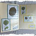 ART 2006 06 herbier6