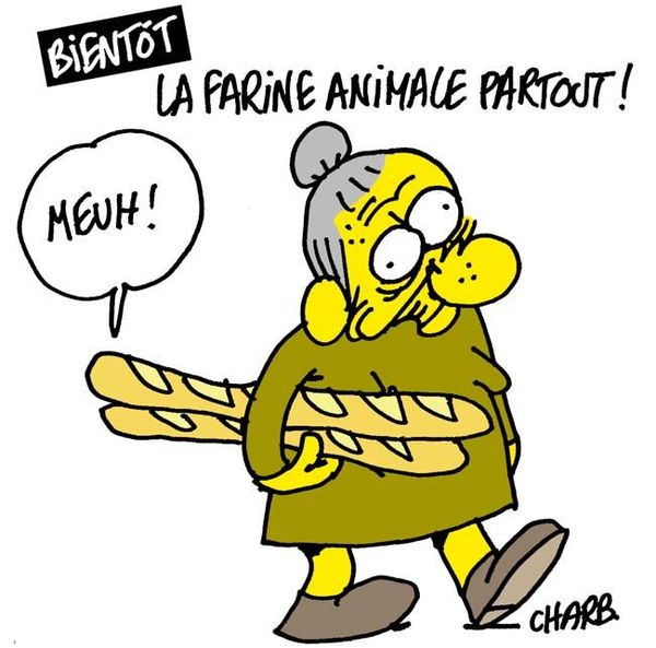 993_Charb_FarineAnimale