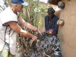 VOIR DE SATISFACTION
