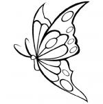 coloriage-papillon