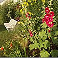 Windows-Live-Writer/jardin_D005/DSCF3870_thumb