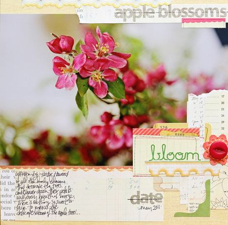 apple_blossoms_by_meganklauer