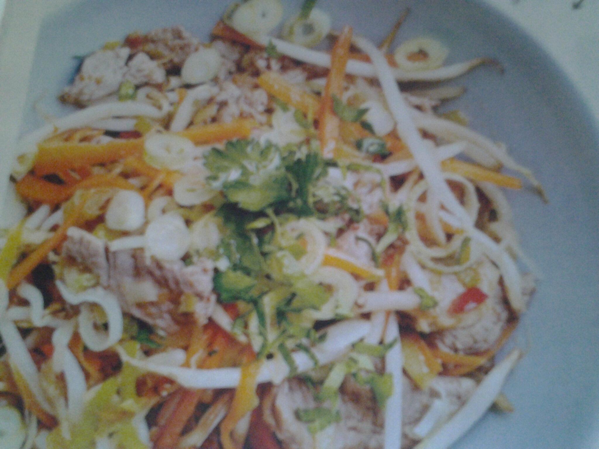 Wok de boeuf aux poireaux, carottes, jeunes oignons et germes de soja