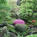 Japanese-Garden-Tatton-Park_22