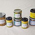 Rivesaline: marais salant de l'île de ré