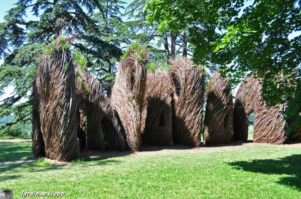 Sculpture-en-saules-3