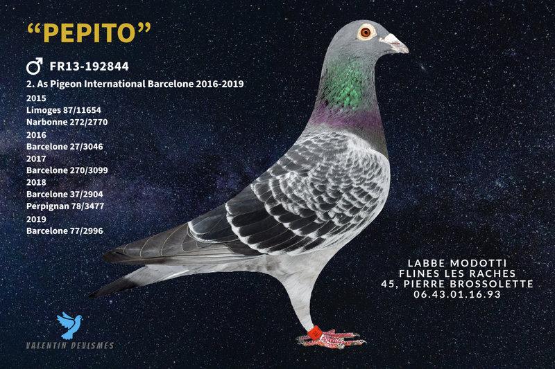 192844 (10) Pépito LABBE