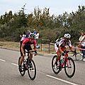 M_StVulbas289
