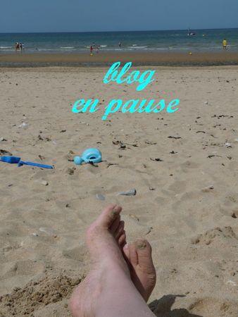 Copie_de_P1030218