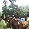 chargement des chevaux avant le trek dans le massif du Bale