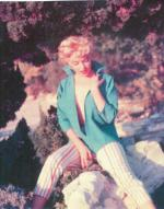 1954-PalmSprings-HarryCrocker_home-by_ted_baron-blouse-053-1a