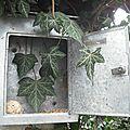 Chambres d'hôtes de la graineterie buxy