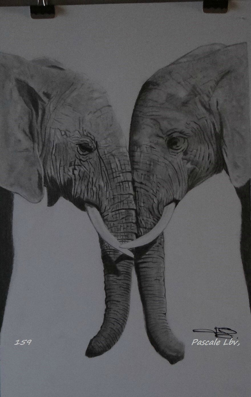 159 - COUPLE D ELEPHANTS