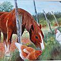 Une visite chez les poules...