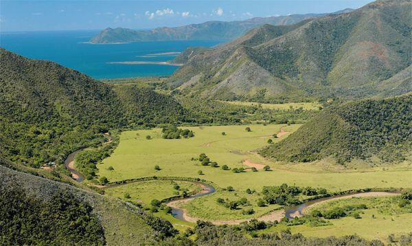 Bourrail Nouvelle-Calédonie