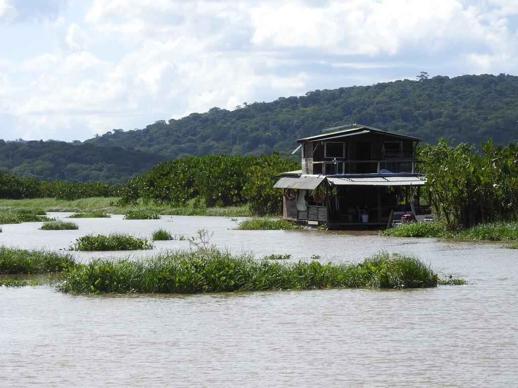 Marais de Kaw, carbet flottant