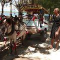 Transports urbains des iles Gillis