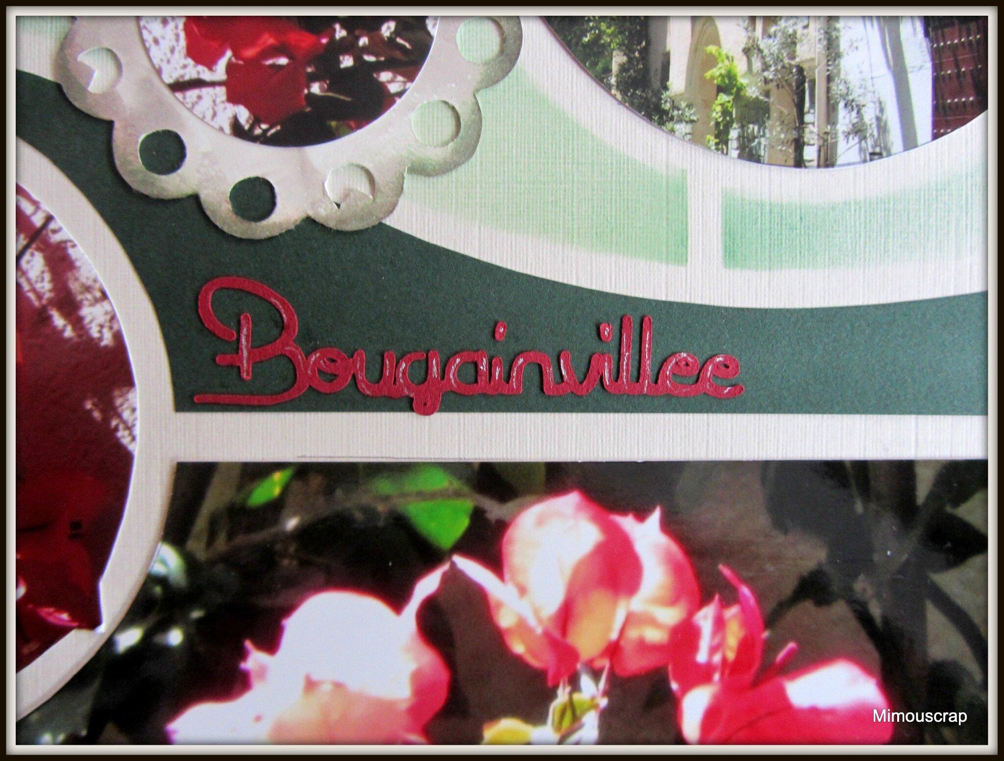 Collioure1 2014 028bb