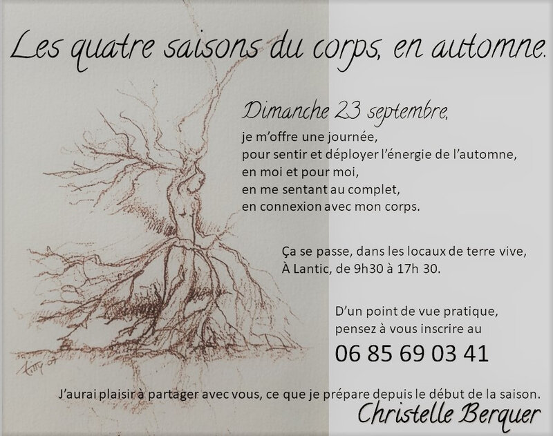 annonce stage automne