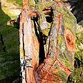 Matières, Cimetière Bateaux, Bretagne - Plougrescant (Beg ar Vilin)_6695