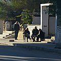 Tunisie - sur les routes de djerba 3