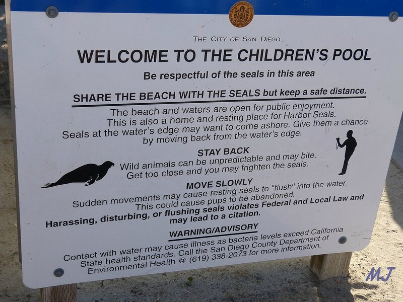 welcome to the children's pool
