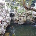 yu garden_161