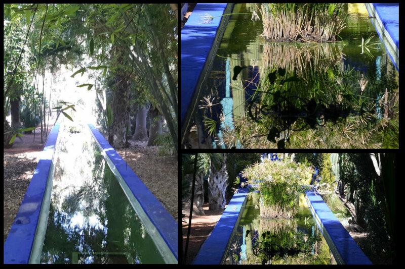 bassin 4