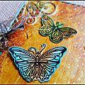 _ Azoline 2018-Jardin aux papillons 2