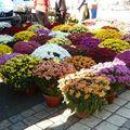 Les marchés étalent pour toussaint et hallowen les couleurs et les saveurs.