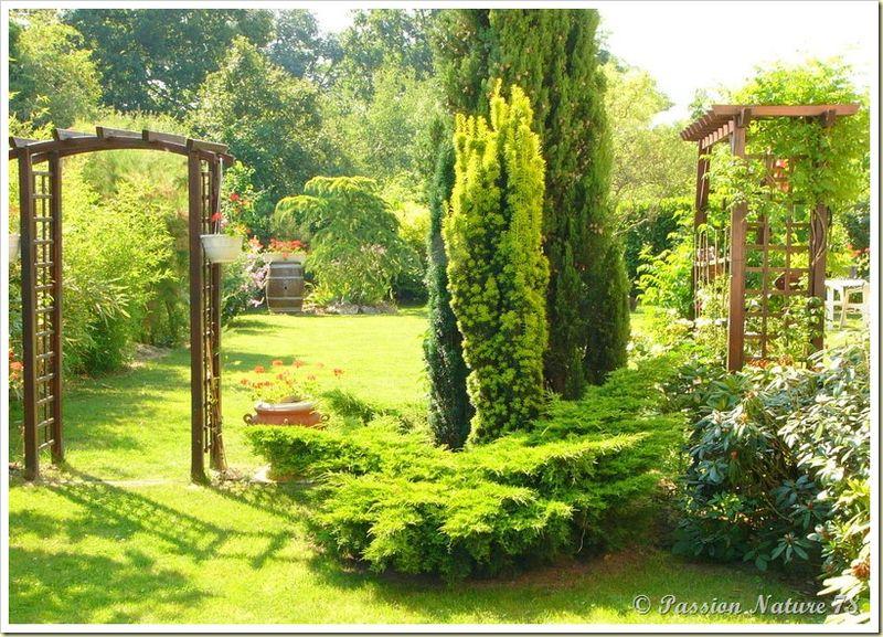 Petite promenade dans notre jardin (24)