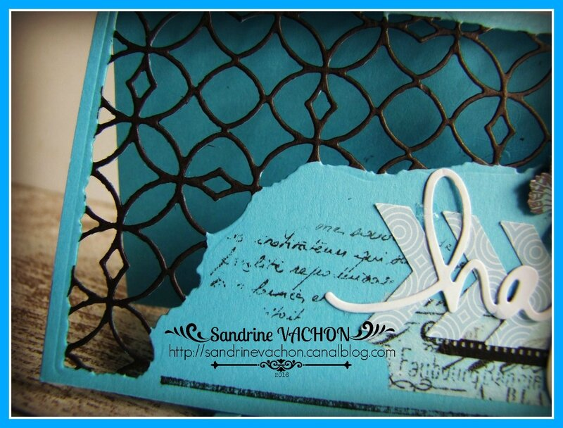 Sandrine VACHON PCC35 (3)