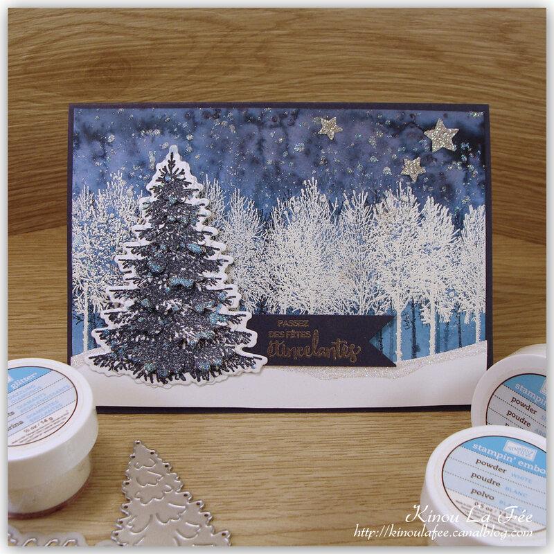 Carte Bois Hivernaux bleue 1