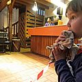 Bagolo fo à la ferme de la harpe à rennes-villejean le 7 juin 2013 (3)
