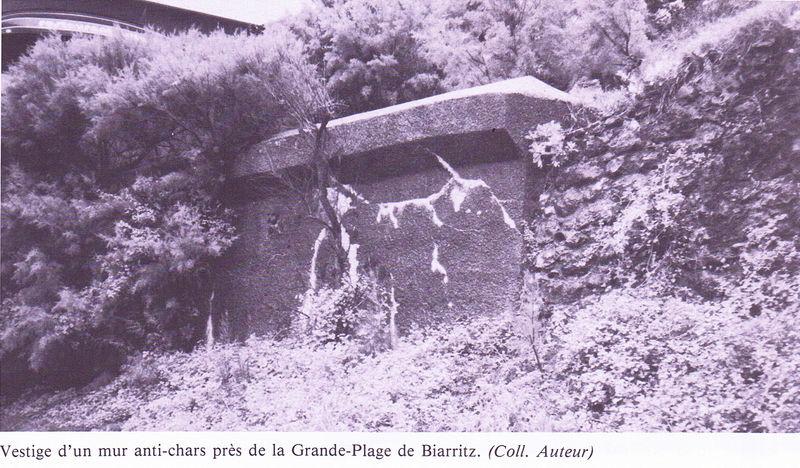 Mur antichars btz
