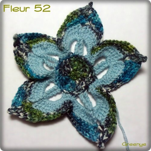 Fleur 52