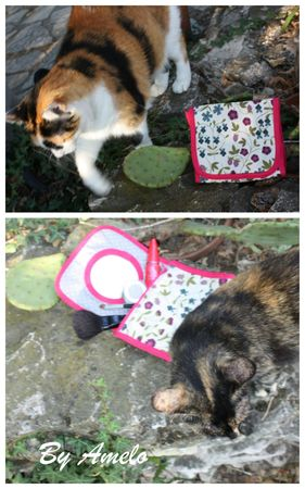 Trousse Elise Chats