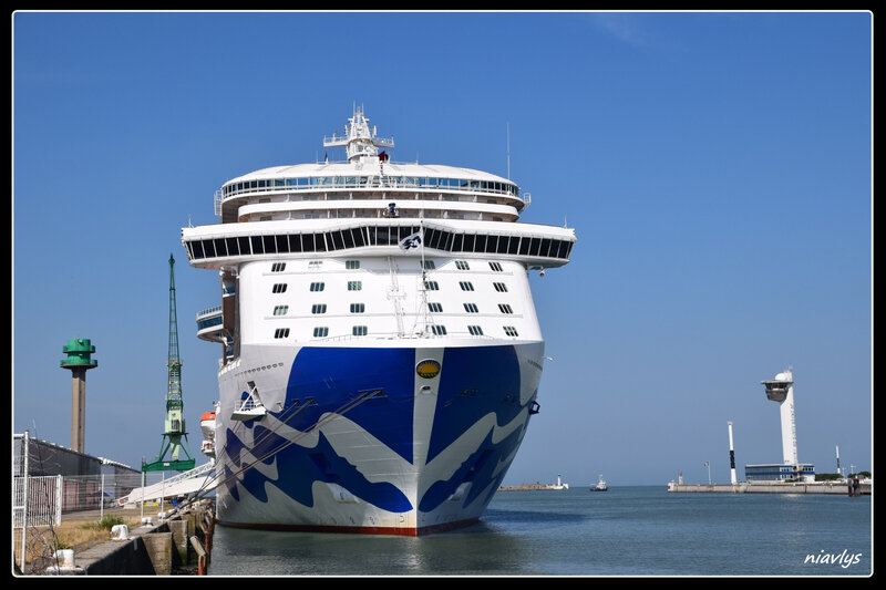 royal princess 4