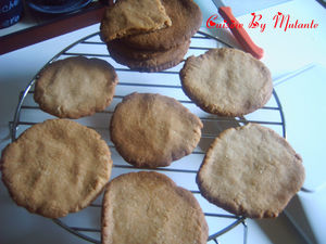 broy__et_biscuits_cardamome_022_copier