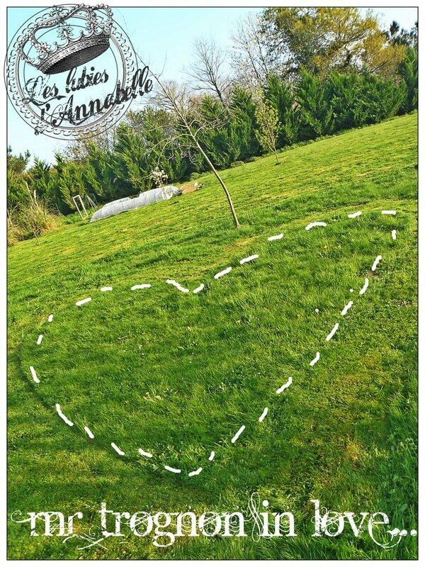 Coeur tondu dans l'herbe
