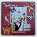 papillonner 1 500px