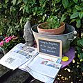 Windows-Live-Writer/jardin-charme_12604/DSCN0616