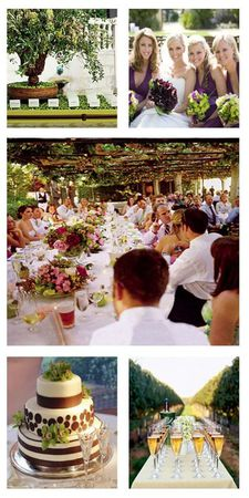 vineyard_wedding_copy_512x1024