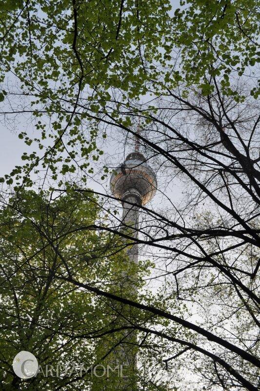 41 berlin fernsehturm